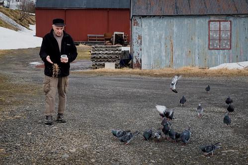 """Ólafur Guðmundsson • <a style=""""font-size:0.8em;"""" href=""""http://www.flickr.com/photos/22350928@N02/49842747938/"""" target=""""_blank"""">View on Flickr</a>"""