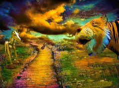 National Geographic Turned This Down (Rusty Russ) Tags: lions tigers bears horses birds boardwalk national geographic remote island far away photoshop flickr yahoo facebook stumbleupon image france south seas lost time google bing daum getty magazine creative creativity montage composite manipulation color hue saturation flickrhivemind pinterest reddit flickriver t pixelpeeper blog blogs openuniversity flic twitter alpilo commons wiki wikimedia worldskills newsroom interesting surreal avant guarde tinder tumbler unique unusual fascinating art life outside