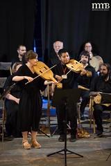 19-07-20 MedievalMúsicBesalú-Concert (135)