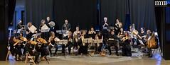 19-07-20 MedievalMúsicBesalú-Concert (245)