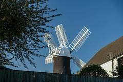 Holgate Windmill, April 2020 - 7