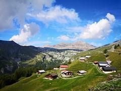 Anglų lietuvių žodynas. Žodis Swiss reiškia 1. n šveicaras; 2. a šveicariškas, šveicarų lietuviškai.