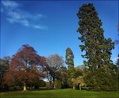Photo of Camperdown Park