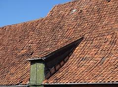 Anglų lietuvių žodynas. Žodis schaaf reiškia <li>schaaf</li> lietuviškai.