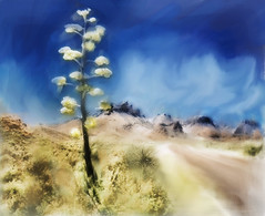 Chisos Mountains Yucca. Painterly Impression.
