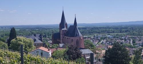 Katharinenkirche Oppenheim (Oppo Reno 2, Volbild, 2x, 2,49 MB)