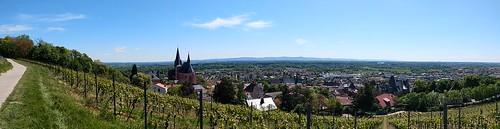 Katharinenkirche Oppenheim (Moto G6 Plus, Panorama, 0,75 MB)