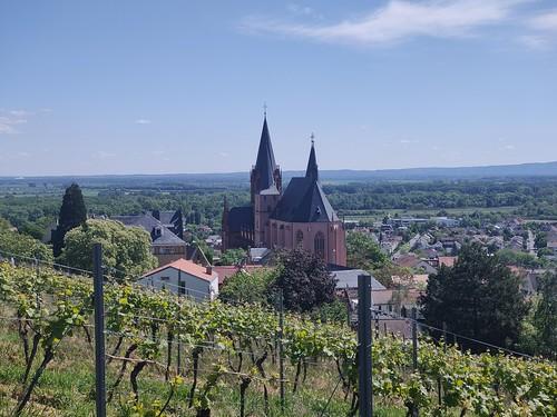 Katharinenkirche Oppenheim (Oppo Reno 2, 4x3, 2x, 5,17 MB)