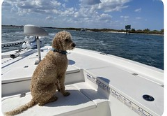 Buddy on his boat