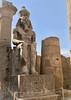 Égypte, Louxor (ancienne cité de Thèbes), Temple d'Amon, Grande cour de Ransès II, Statue du pharaon à droite au fond de la cour
