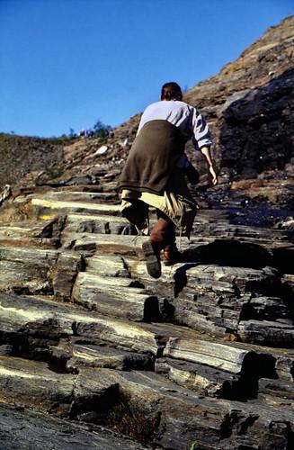 """Norwegen 1998 (580) Weg zum Svartisen • <a style=""""font-size:0.8em;"""" href=""""http://www.flickr.com/photos/69570948@N04/49881048483/"""" target=""""_blank"""">Auf Flickr ansehen</a>"""