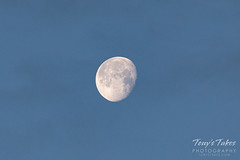 May 10, 2020 - A morning moon. (Tony's Takes)