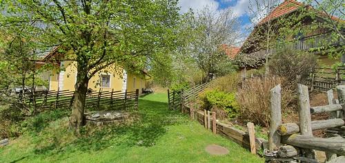 Frühling am Ponyhof Steiermark