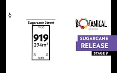 Lot 919, Sugarcane street, Mickleham VIC