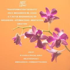 Tuesday's in June , Join @bloveespeaks and friends! . . #mindfulness#rva#southofthejames#broadrockcommunitygarden#meditation#spokenword#rvaspokenword#gardenmeditation#rvacommunitygardens