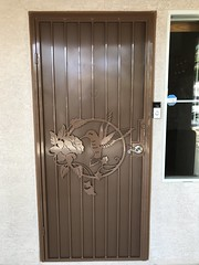 """Hummingbird Security Door • <a style=""""font-size:0.8em;"""" href=""""http://www.flickr.com/photos/113341785@N07/49887926361/"""" target=""""_blank"""">View on Flickr</a>"""