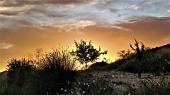 Sunset en los senderos de nuestros paseos
