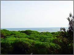 El Portil (Huelva) (Spain)