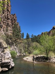 West Fork of the Gila River. 2019.