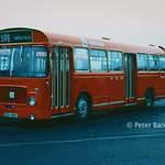 Northern General Transport 4271 (LCN108K) - 09-02-82