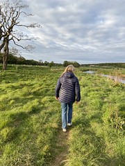 Photo of This evening's walk included a track along the river Tyne we have never tried in 20 years and the wonderful sight of Sand Martins skimming the water before entering their burrows in the bank.