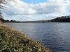 Damflask Reservoir, March 2020