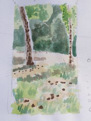 Watercolour at the park