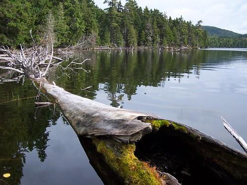 Big Reed Pond