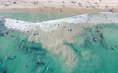 Leighton Beach_0352