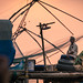 The fisherman. Kochi, Kerala. India
