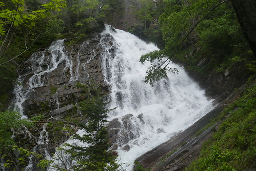 PN Waterton Lakes - Lower Bertha Falls