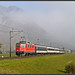 der Nebel im Rheintal...