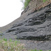 Solsville Shale (Middle Devonian; Morrisville North roadcut, Madison County, New York State, USA) 22