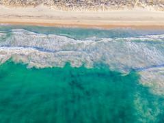 Scarborough Beach_0446