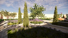 Garden with Italian reminiscences re-edition created by Rosana Almuzara with Lands Design and Enscape