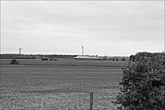 Photo of Meaux Lane  Monochrome