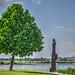 Baum in Ruhrort