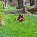 zoo_leipzig_0039