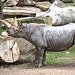 zoo_leipzig_0067