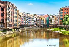 Pont de la Creu Blanca - Girona