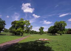 Photo of Hopetoun : Trees & Clouds  (John Muir Way/NCR 76)