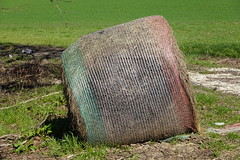 Bale of hay @ Chemin de la Tuilière @ Pringy