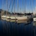 The Pier, Palermo, Sicily, 意大利