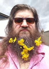 Photo of Yellow flowers in my #beard