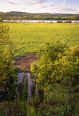Photo of Farm track, Lochwinnoch, Renfrewshire, Scotland, UK