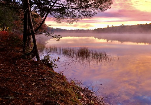 Coleman Pond
