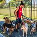 2020 - Argentina - Buenos Aires - Recoleta - Plaza de las Naciones Unidas - Paseadores de Perro