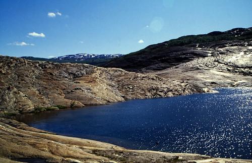 "Norwegen 1998 (590) Austerdalsvatnet • <a style=""font-size:0.8em;"" href=""http://www.flickr.com/photos/69570948@N04/49932456693/"" target=""_blank"">View on Flickr</a>"