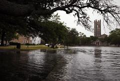 Norfolk Tidal Flooding
