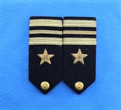 Anglų lietuvių žodynas. Žodis line-officer reiškia n rikiuotės karininkas lietuviškai.